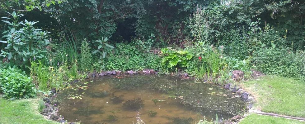 Regenwater Randwijk 1